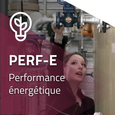 Perf-E